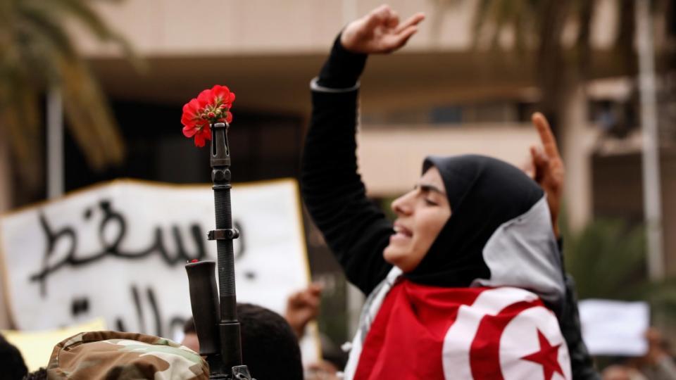 Jasmine Revolution, Arab Spring, Tunisian revolution, Tunisian constitution, Tunisian reforms