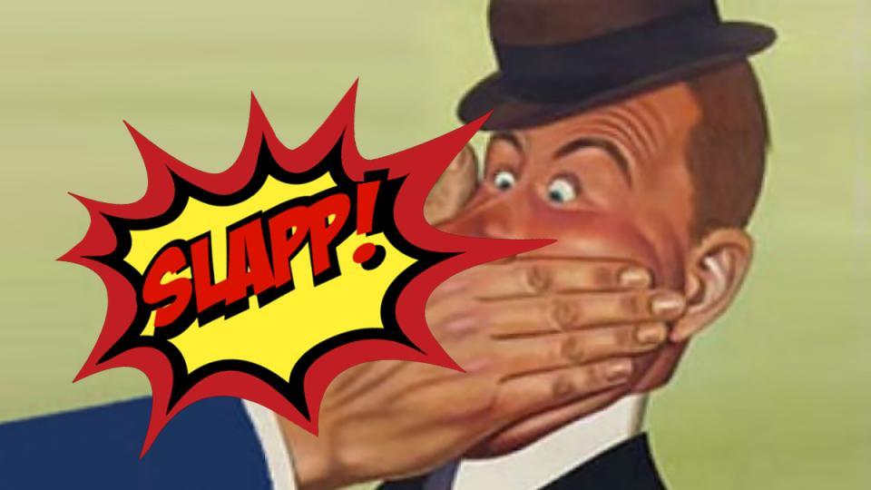 SLAPP lawsuits, libel suits, free speech, environmental advocacy groups, suing nonprofits