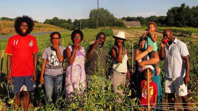 Black Dirt Farm Collective
